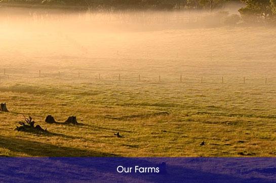 img_farms